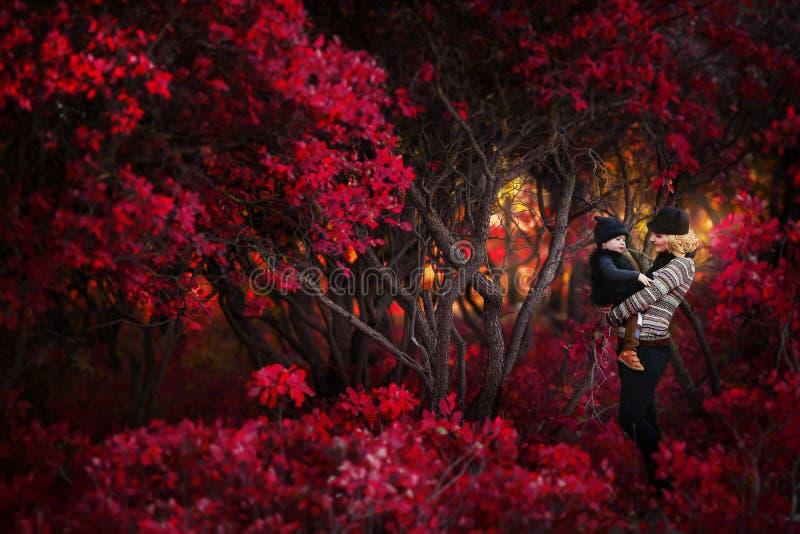 Πορτρέτο της ευτυχούς οικογένειας, πάρκο φθινοπώρου υπαίθρια στοκ εικόνα με δικαίωμα ελεύθερης χρήσης