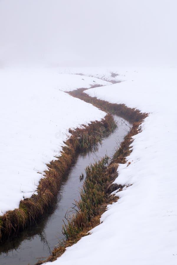 Ποταμός κολπίσκου με τους θάμνους στους ανέμους τραπεζών μέσω του χιονώδους τομέα στοκ εικόνα
