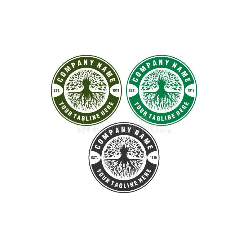 Πράσινα σχέδια λογότυπων αντισφαίρισης διανυσματική απεικόνιση