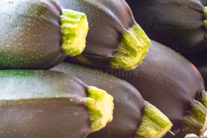 Πρόσφατα συγκεντρωμένη θερινή κολοκύνθη λαχανικών κολοκυθιών στοκ φωτογραφία