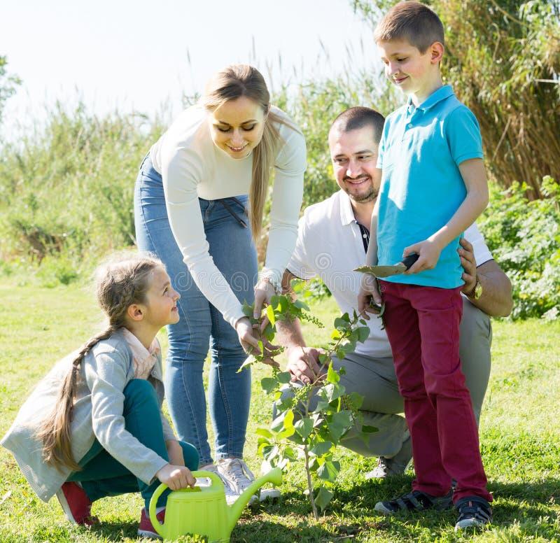 """ï"""" ¿ familj som utomhus planterar trädet arkivfoton"""