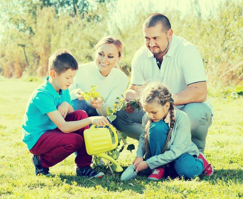 """ï"""" ¿ familj som utomhus planterar trädet fotografering för bildbyråer"""