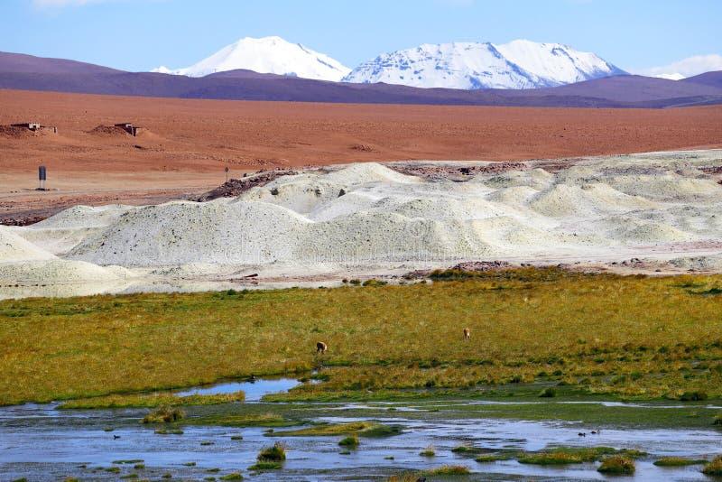 Андийские гористые местности, пустыня Atacama, Чили стоковая фотография