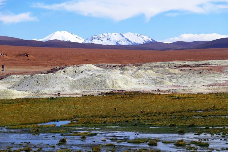 Андийские гористые местности, пустыня Atacama, Чили стоковые изображения rf