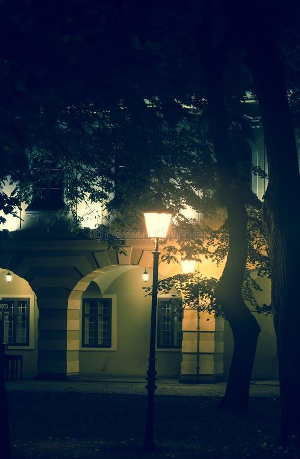Атмосферические старые дома и деревья, Vinkovci, Slavonija, Хорватия стоковые изображения