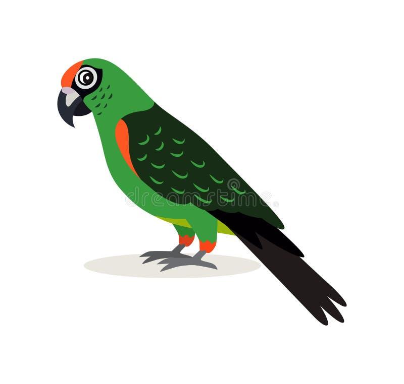 Африканское животное, красочный зеленый значок неразлучника попугая изолированный на белой предпосылке, иллюстрации вектора в пло иллюстрация вектора