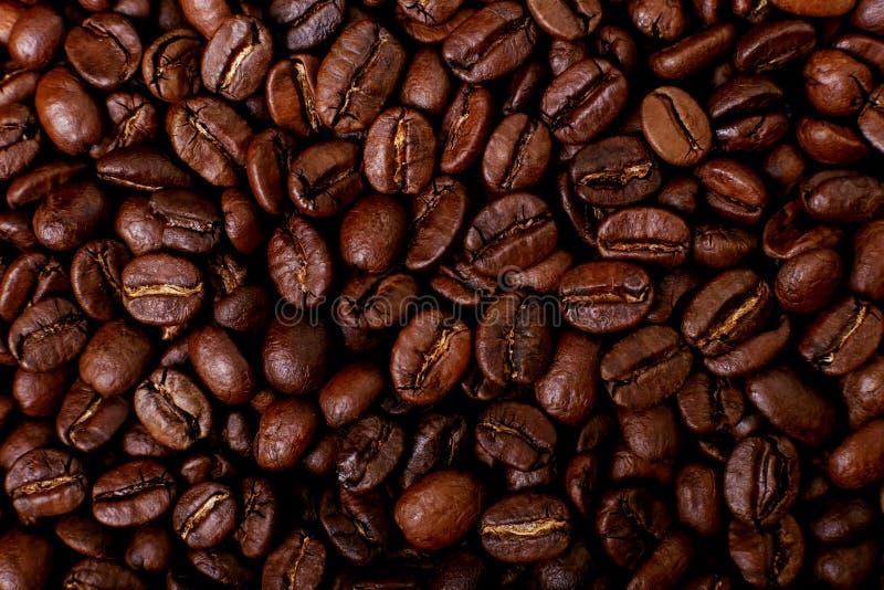 Ароматность зажарила в духовке кофейные зерна, коричневую предпосылку поднимающее вверх близкого фокуса мягкое стоковые фотографии rf