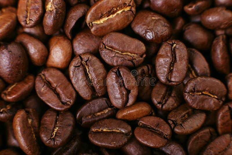 Ароматность зажарила в духовке кофейные зерна, коричневую предпосылку поднимающее вверх близкого фокуса мягкое стоковое изображение