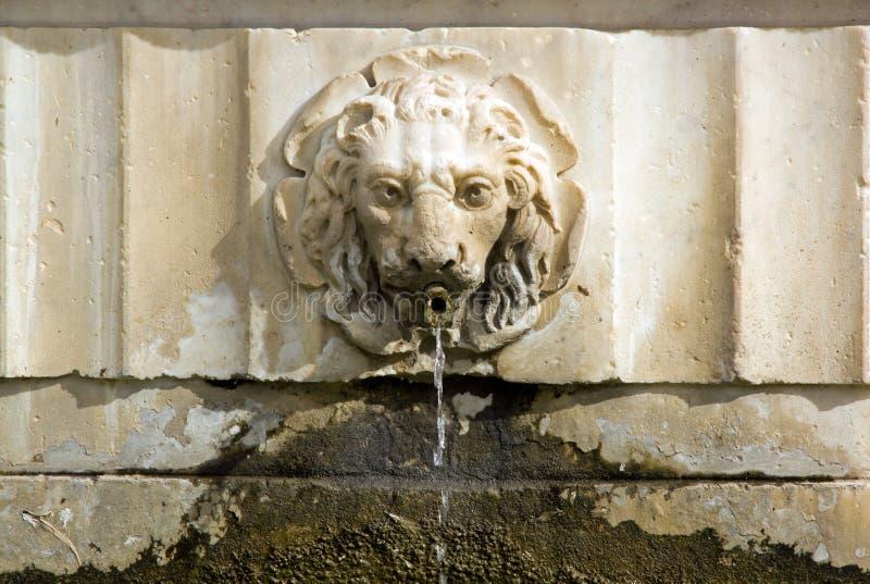 Барельеф Лукка Тоскана Италия льва фонтана стоковые фото