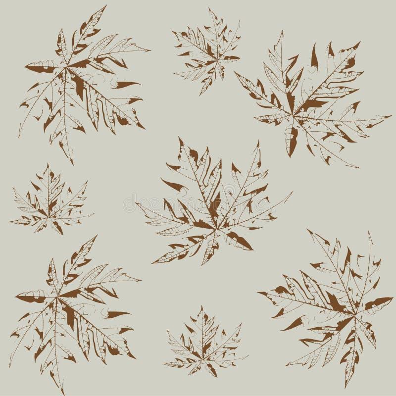 Безшовная картина лист папапайи стоковое фото