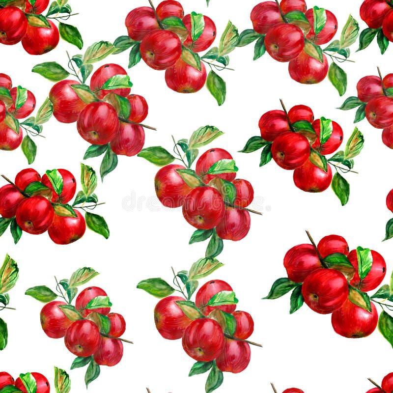 Безшовная картина с акварелью покрасила яблоки иллюстрация вектора