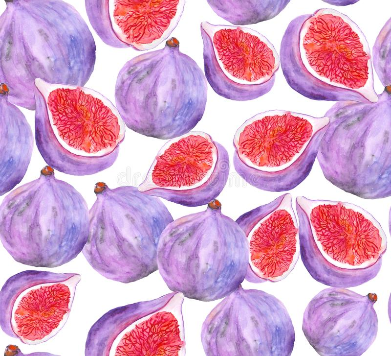 Безшовная картина с изображением свежих и посоленных смокв в акварели иллюстрация штока