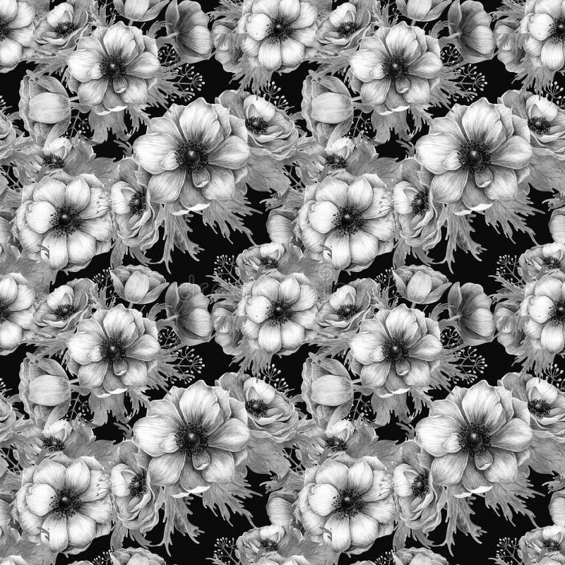 Безшовная картина с цветками ветреницы акварели белыми пурпурными Дизайн весны флористический для приглашения свадьбы иллюстрация вектора
