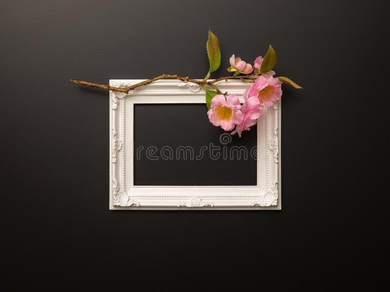 белая рамка на черной предпосылке с вишневыми цветами стоковая фотография