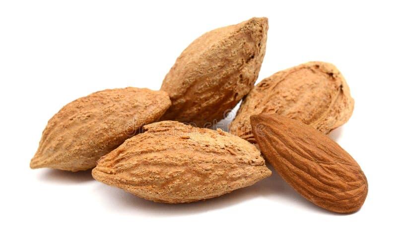 белизна миндалины изолированная предпосылкой nuts Органический, еда стоковая фотография