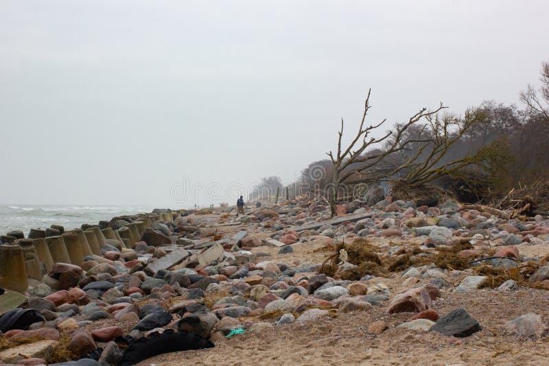 отметить, удивительные находки после шторма балтика фото содержал пять заболеваний