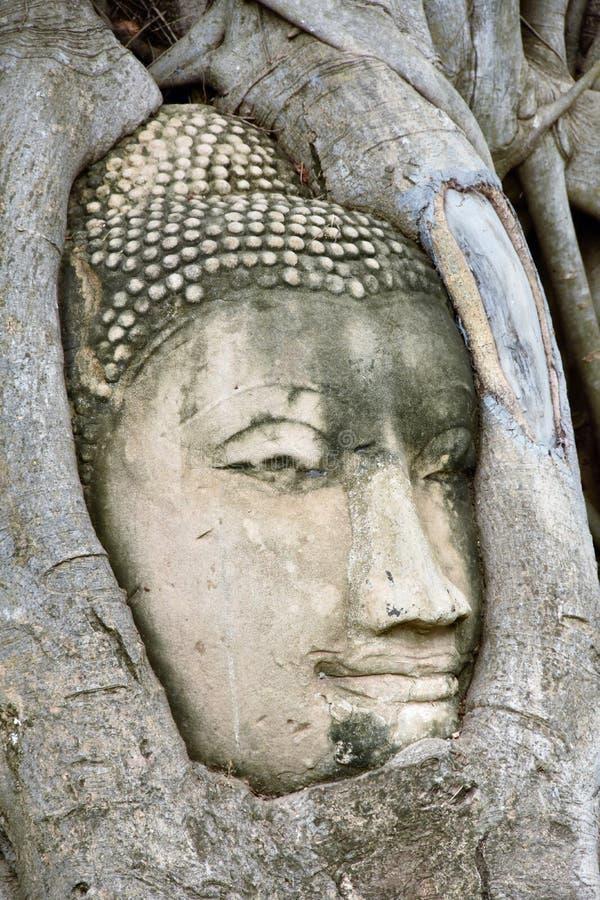 Будда Wat Mahathat Maha это стоковое фото rf