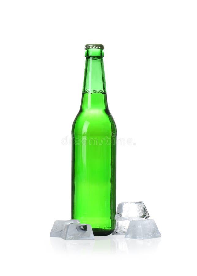 Бутылка кубов пива и льда стоковые изображения rf