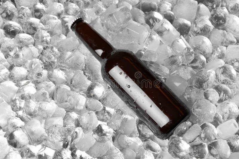 Бутылка пива на кубах льда стоковые фото