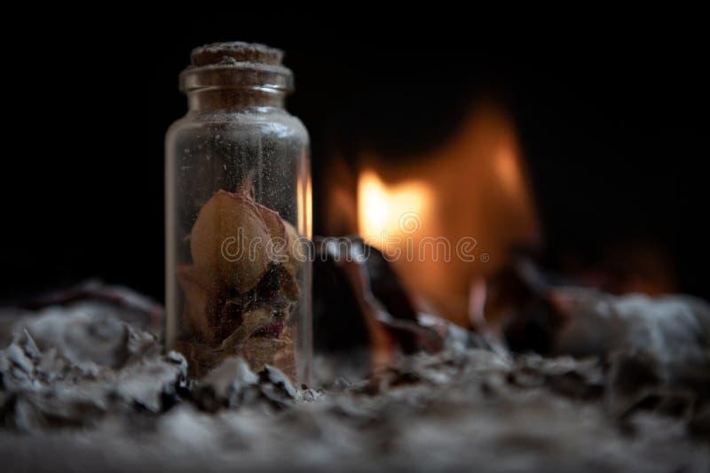 Бутылка с лепестками цветка Зола на черной предпосылке памяти стоковая фотография rf