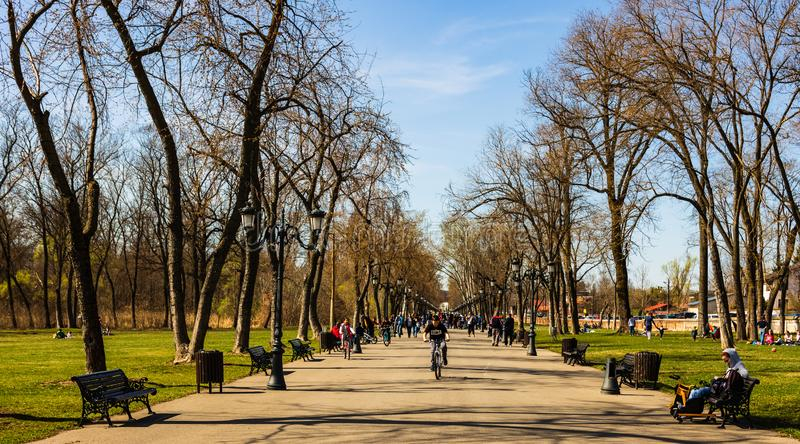 Бухарест, Румыния 2019 Люди принимая прогулку на солнечный весенний день в общественном парке Mogosoaia стоковое фото