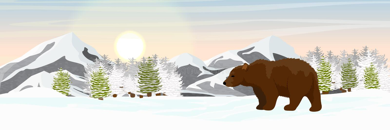 Бурый медведь идет в покрытые снег елевые горы леса на горизонте иллюстрация штока