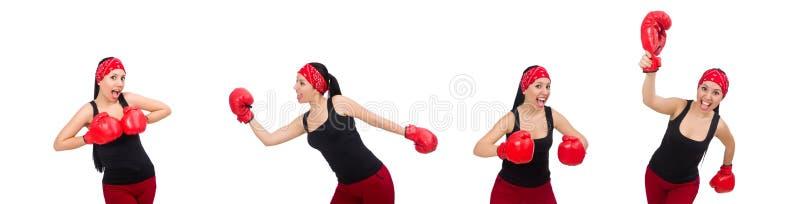 Боксер женщины на белизне стоковые изображения