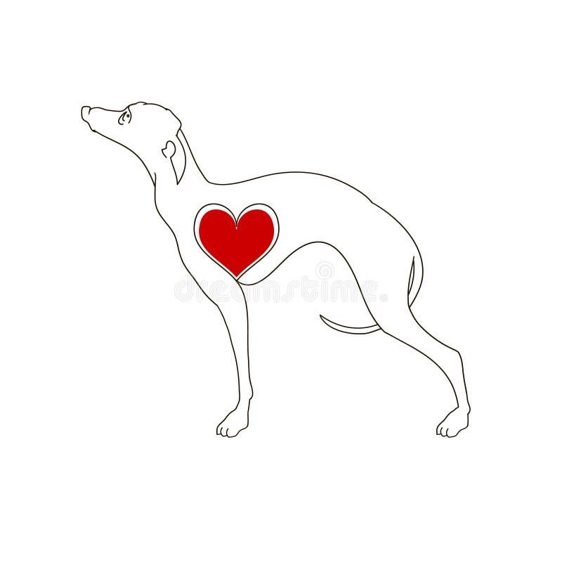 Борзая породы собаки Линейное изображение Собака татуировки с сердцем иллюстрация штока