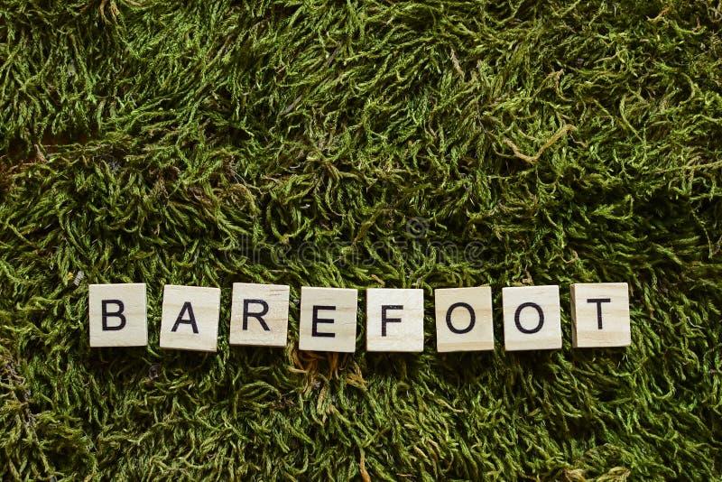 Босоногое написанное с деревянными письмами cubed форма на зеленой траве стоковое изображение