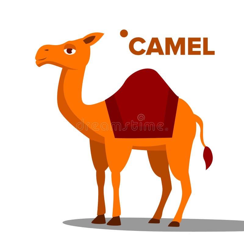 Вектор верблюда Смешным изолированная животным плоская иллюстрация мультфильма иллюстрация вектора