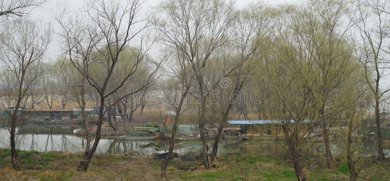 Весна в озере Gaoyou стоковые фотографии rf