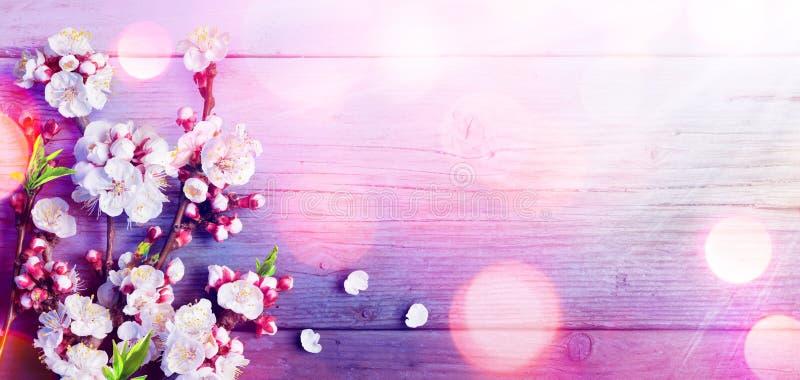 Весна - палитра цветов тенденции - розовые цветения стоковое изображение