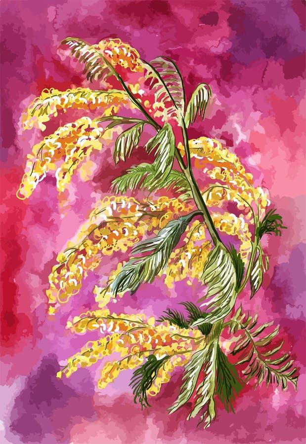 Ветвь цвести яркая желтая мимоза на абстрактной предпосылке акварели, подобная выравниваясь бурному небу Яркая весна бесплатная иллюстрация