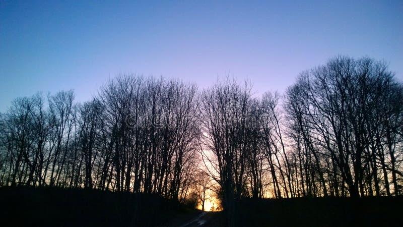 Вечер весны Заход солнца стоковое фото rf