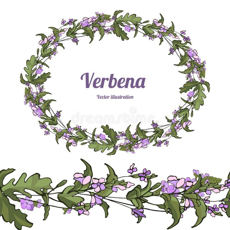Вербена шаблона иллюстрация вектора