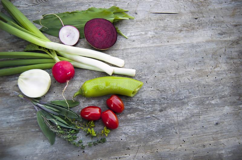 Верхняя съемка, конец вверх красочной молодой весны свежо жать, органических, хрустящих, сочных свежих овощей с космосом экземпля стоковые фото