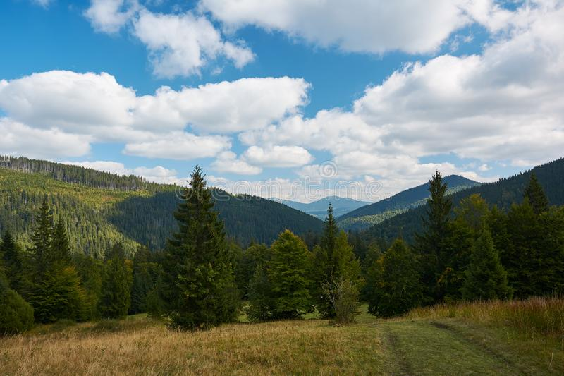 Взгляд гор и леса осени около озера Synevyr во дне падения лист стоковая фотография