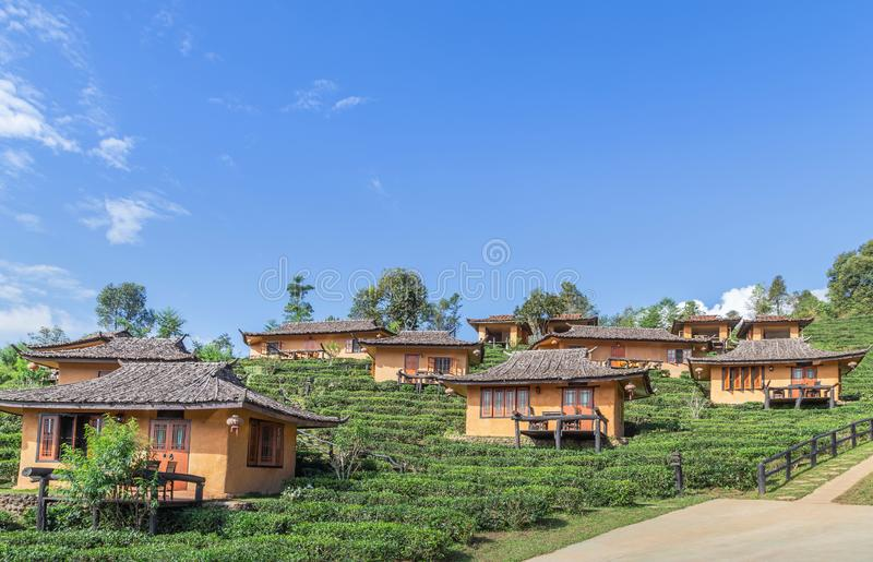 Взгляд ландшафта деревни общины rak запрета тайской китайской в Pai, Mae Hong Son, Таиланде с плантацией чая под голубым небом стоковые фото