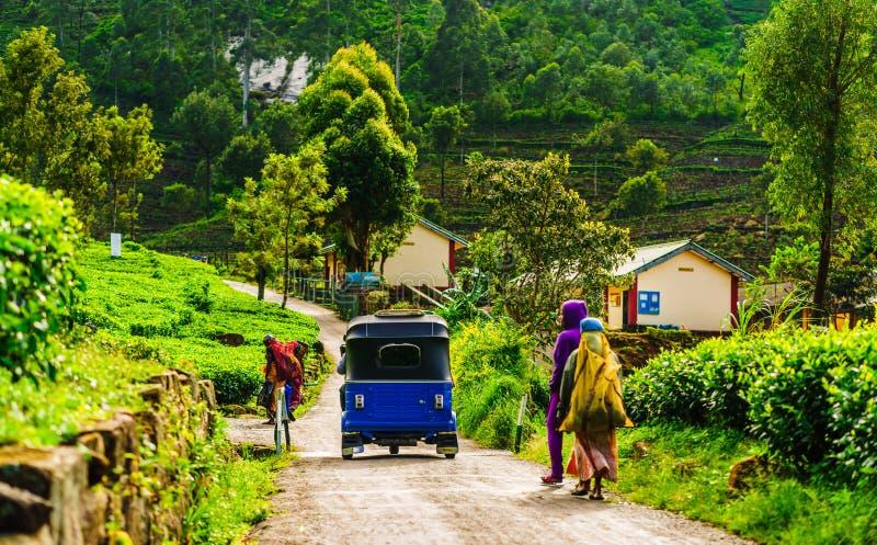Взгляд на красном Tuk Tuk на пути к плантации чая в Haputale, Шри-Ланка стоковое изображение