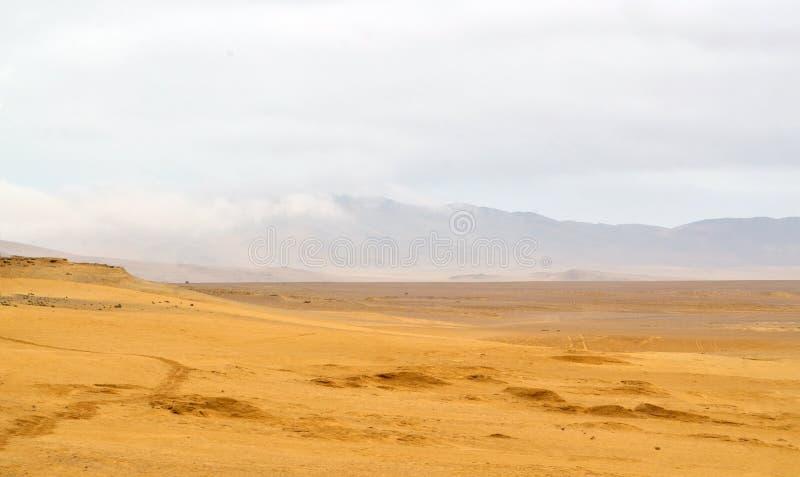 Взгляд пустыни в Южной Америке стоковые фото