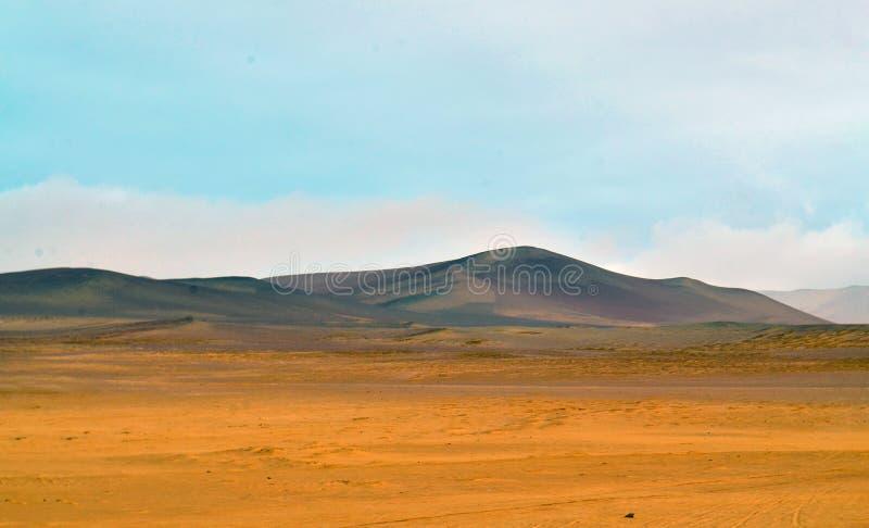 Взгляд пустыни в Южной Америке стоковое фото rf