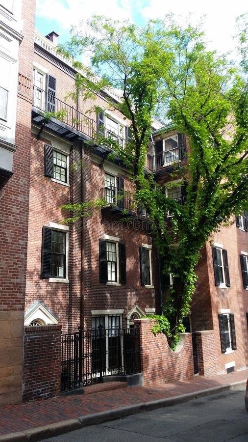 Взгляд окна зданий Бостон стоковые изображения