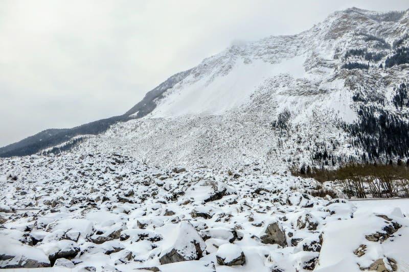 Взгляд от основания горы где огромное скольжение утеса случилось Огромные валуны выравнивают гору предусматриванную в снеге стоковая фотография rf