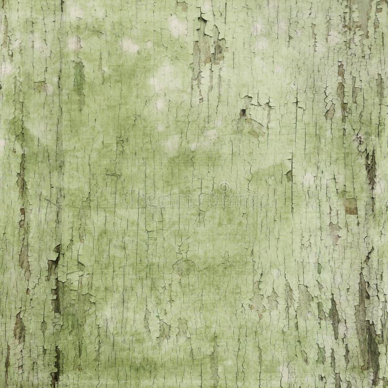 Винтажная зеленая акварель - откалыванная текстура предпосылки краски - огорченная деревянная предпосылка - зеленый цвет иллюстрация вектора
