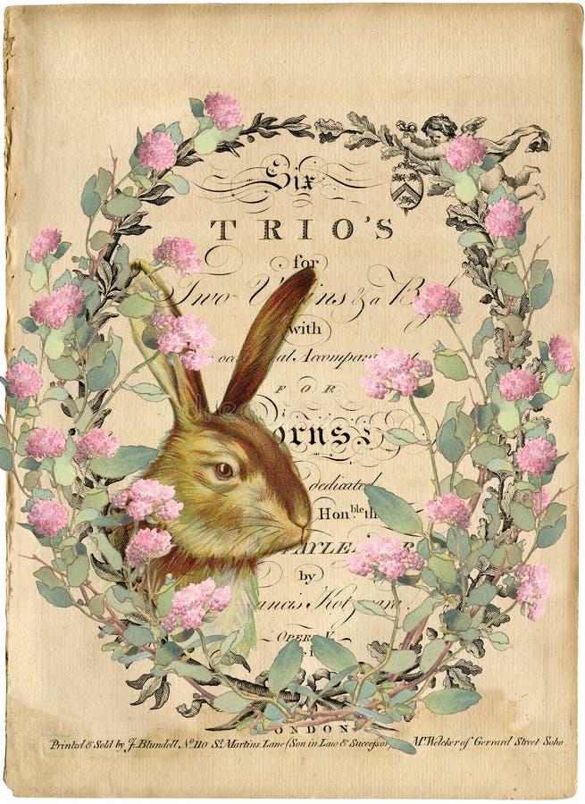 Винтажная иллюстрация кролика акварели - естественная история - пасха - венок клевера - винтажная передача изображения стоковая фотография rf