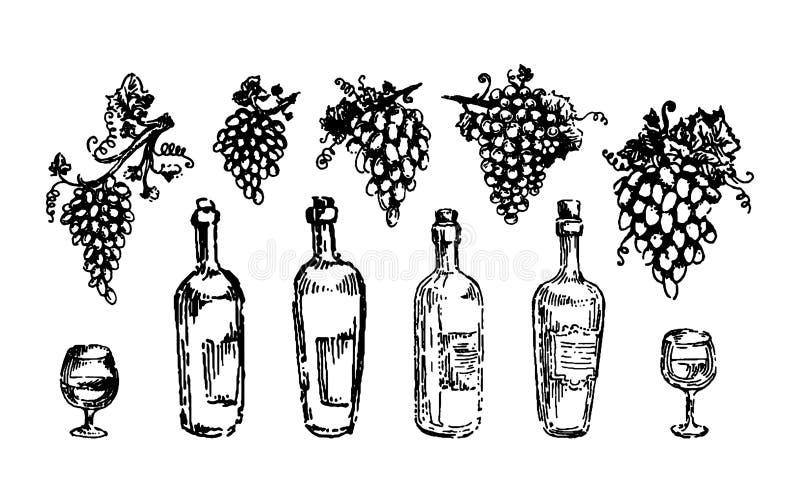Виноградины вино и рука лозы тонут вектор эскиза иллюстрации бесплатная иллюстрация
