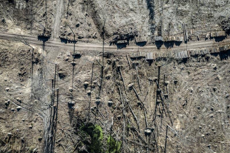 Вид с воздуха ужасного обезлесения, вносящ в журнал, экологическое разрушение стоковое фото