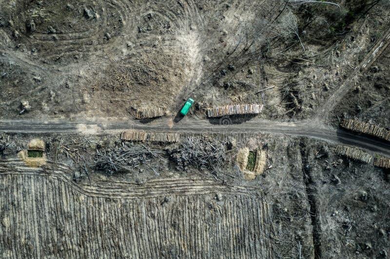 Вид с воздуха ужасного обезлесения сбор леса, Польша стоковое изображение rf