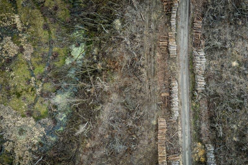 Вид с воздуха ужасного обезлесения, разрушенного леса для сбора стоковое фото rf