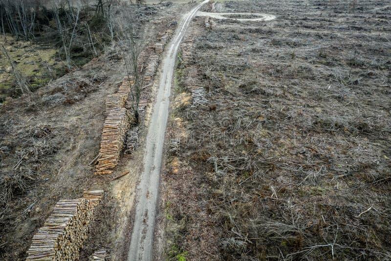 Вид с воздуха ужасного обезлесения, разрушил лес для сбора, Польшу стоковые фото